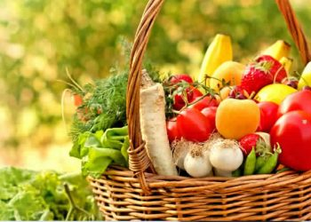 agro-alimentaire